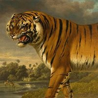 Midlands Art Papers reframes the wild in new Wolverhampton exhibition
