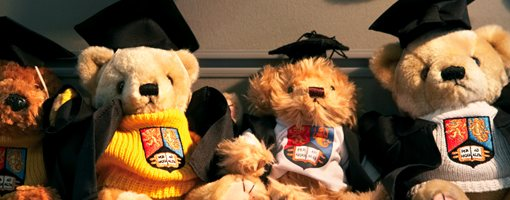 Teddy bears with University logo and graduation outfits