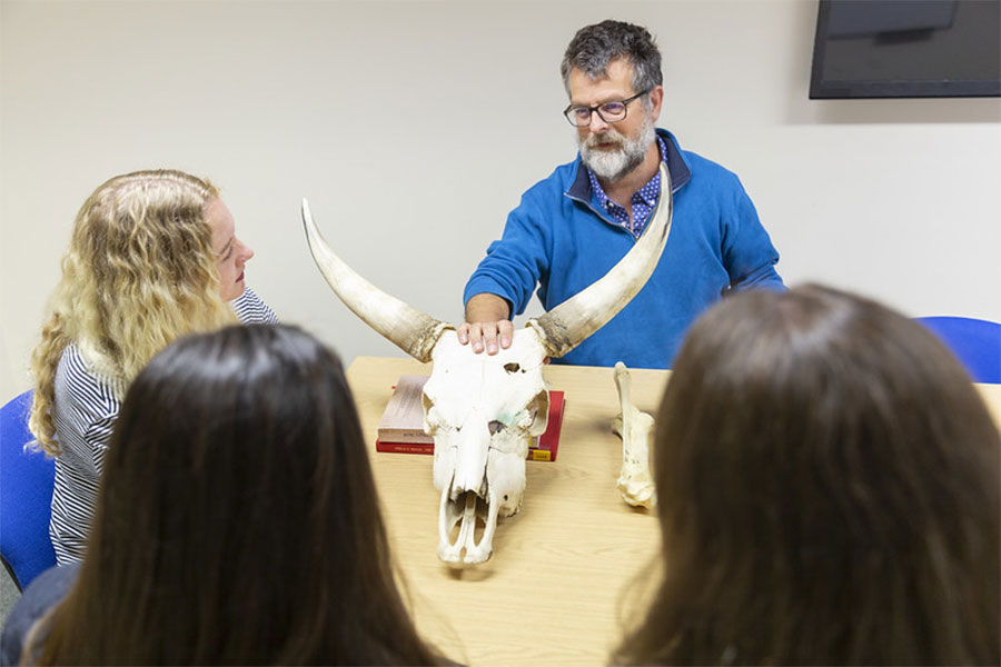Dr Smith talks about a skull from the Chillingham cattle herd. The oldest wild herd of cattle in England.