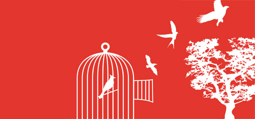 Birds fly from an open cage.