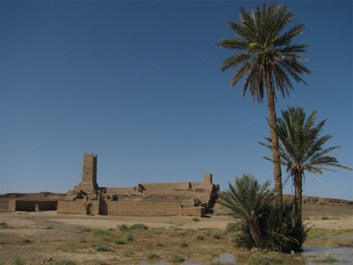Photograph of residence in the Sahara with two trees in the foreground