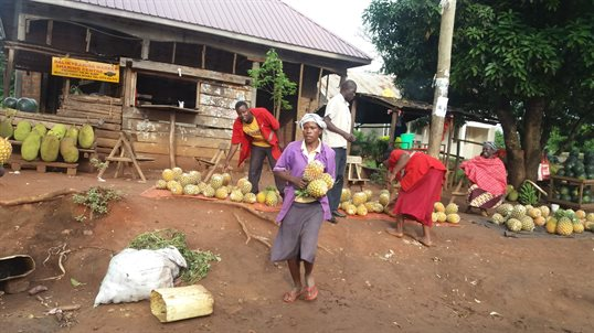A photo of local people in Uganda, selling pineapples at a market.