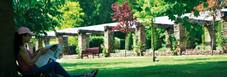 Picture of a student studying in the University's Winterbourne Gardens