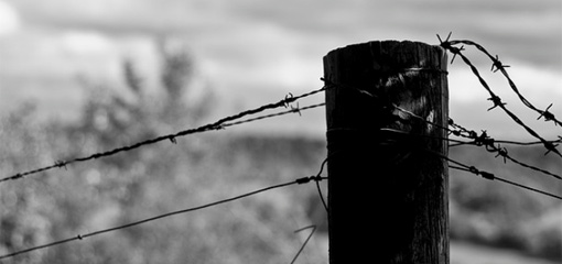 Photograph of barbed wire on a fence post