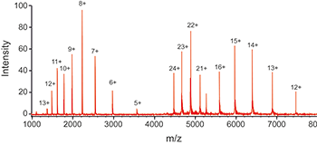 Chart showing mass spectrometry analysis read-out
