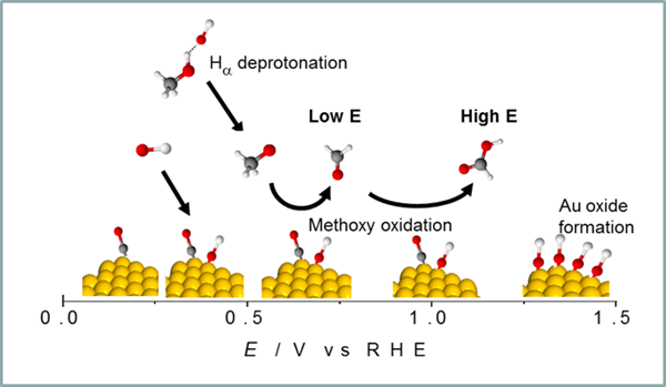 Illuustration showing promoting effect of adsorbed carbon monoxide on the oxidation of alcohols on a gold catalyst