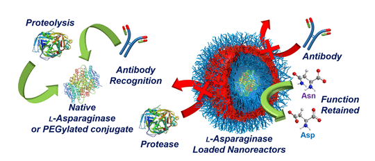 Confinement of Therapeutic Enzymes in Selectively Permeable Polymer Vesicles by Polymerization-Induced Self-Assembly (PISA)