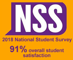 Physics and Astronomy 2018 NSS score