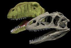 Palaeobiology