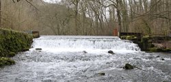 The River Lathkill with normal winter flow