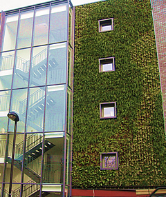 Green wall - photo ANS Group (Europe)