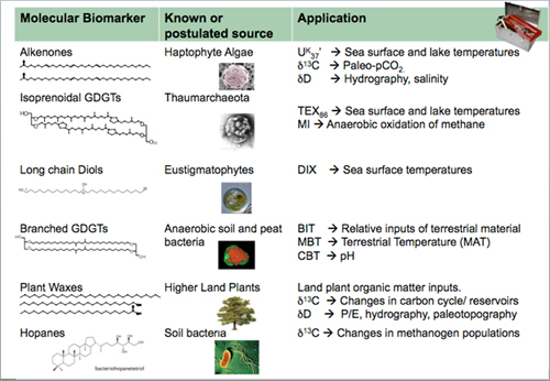 high utility biomarker applications