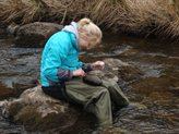 Student collecting samples from a stream during fieldwork
