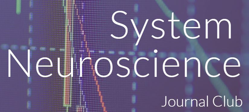 system neuro journal club