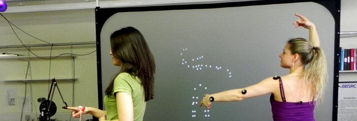 Light-point displays used for modelling human action