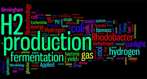 Bio-hydrogen publication word cloud, created in 2012 using Wordle