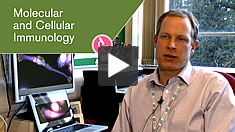 Molecular and Cellular Immunology video