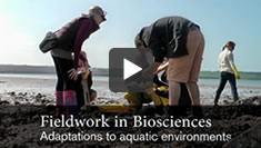 Biosciences fieldwork video
