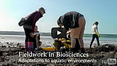 Adaptations to Aquatic Environments video
