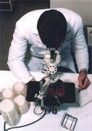 using-microscope