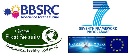 Food Security Research Funding Bodies