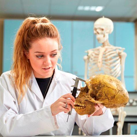 Human Biology BSc - Undergraduate degree course - C103