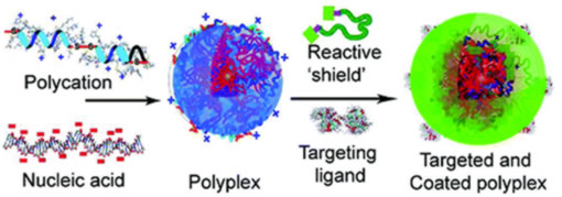 Synthetic multicomponent materials developed for gene delivery