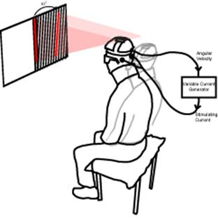 Vestibular feedback control of voluntary movement