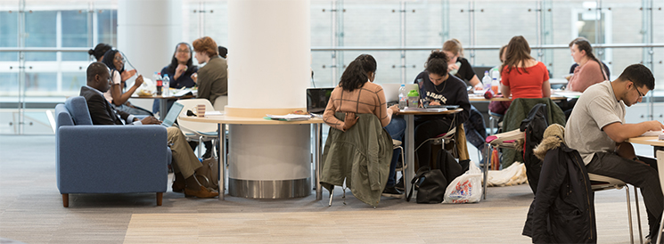 Image of students studying in the common room
