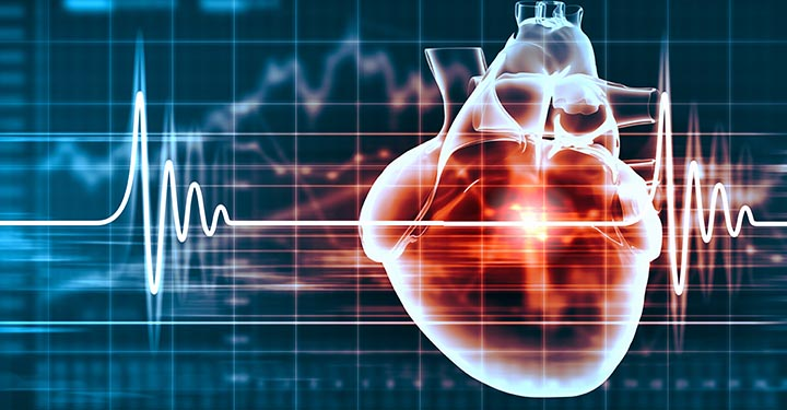 Illustration of a heart and a pulse monitor