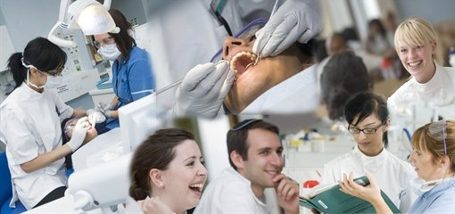 Qualifications to study dentistry