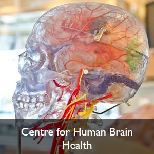 Centre for Human Brain Health with words