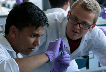 IMI Summer School - Apply now