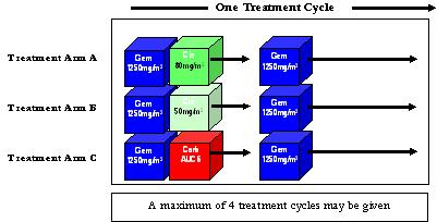 BTOG2-TreatmentCycleChart