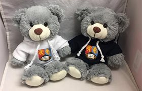 Two teddy bears wearing hoddys with the university crest on