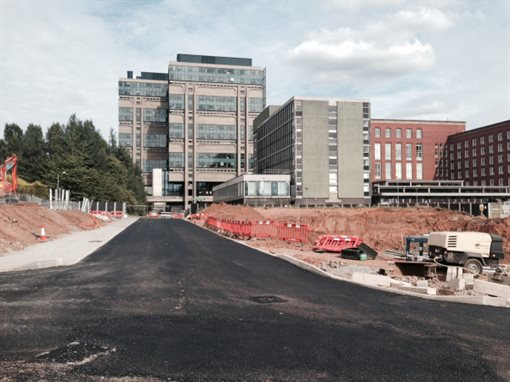 new-road-looking-towards-the-muirhead-tower