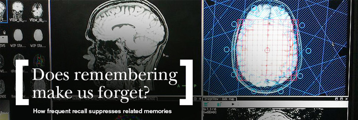 New images of the brain show the forgetful side effect of frequent recall