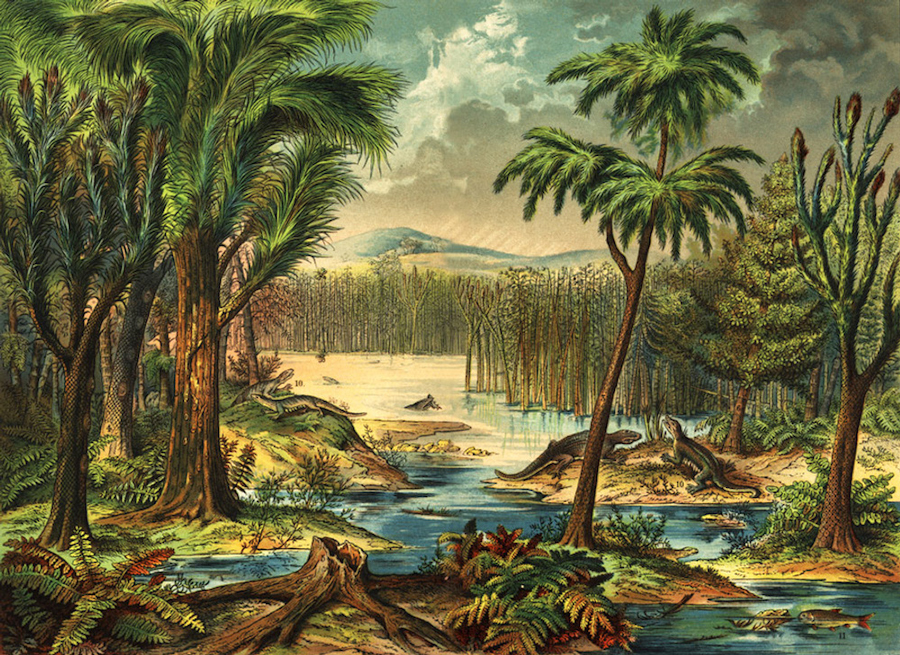 Carboniferous_forest_Mark_Ryan-900px