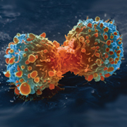 Understanding aggressive cancer cells