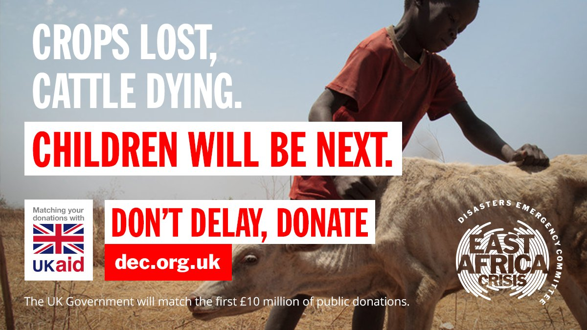 DEC campaign ad showing a young African boy holding up an emaciated calf. Text reads: 'Crops lost, cattle dying. Children will be next. Don't delay, donate.'