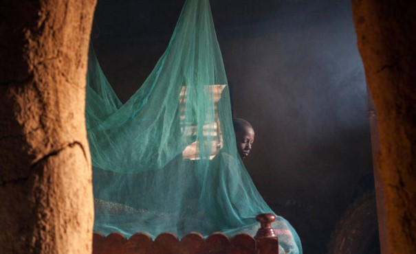 A malaria net over a bed