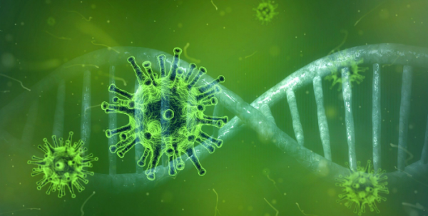 Coronavirus and DNA sequence CGI