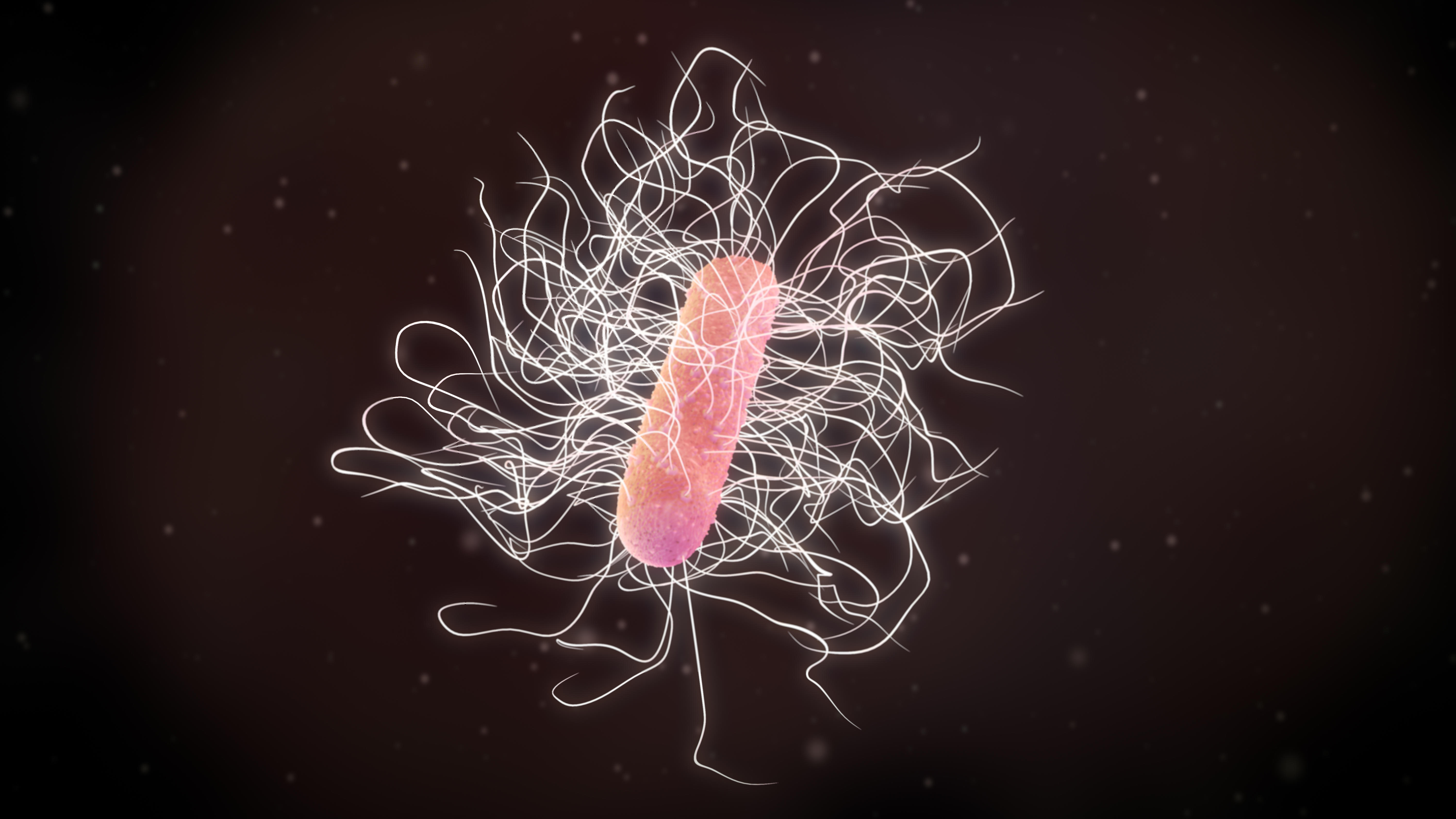 3D Illustration of a Clostridium Difficile bacteria