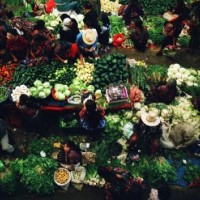 Fresh produce at a market