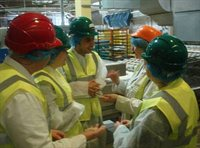 Food safety - factory visit