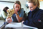 Students studying a skull in a masterclass