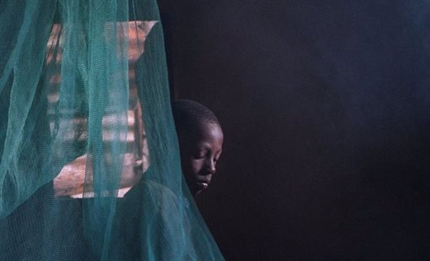 Boy in a mosquito net