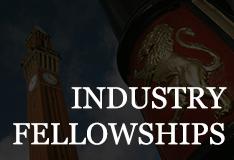 Industry Professorial Fellows