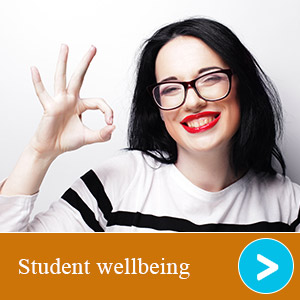 Student well-being