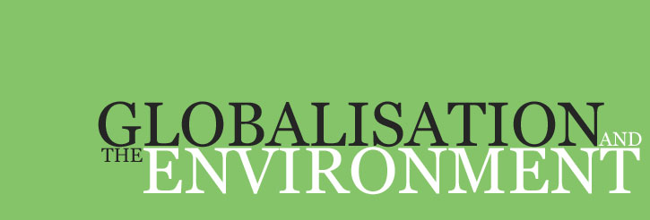 globalization environment research papers Teaching guide for globalization essays view/print text only: selected essays for others voice concern that globalization adversely affects workers and the environment in many countries around the world discontent.